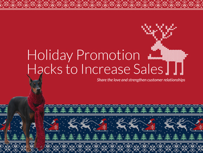 Holiday Promo Hacks to Increase Sales Marketing e-books