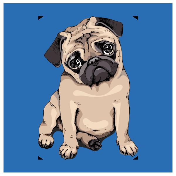 Pet Store Icon